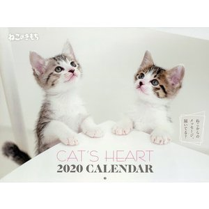 カレンダー '20 ねこのきもち / 石川美和 / 泉山美代子|bookfan