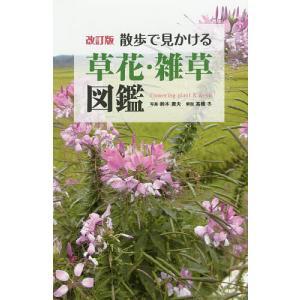散歩で見かける草花・雑草図鑑 / 鈴木庸夫 / 高橋冬