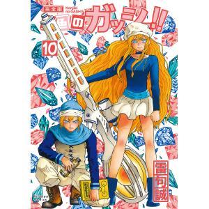金色のガッシュ!! 完全版 10/雷句誠の商品画像|ナビ