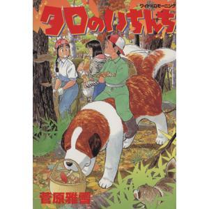 タロのいちんち モーニングKC340モ−ニング/菅原雅雪 (著者)の商品画像 ナビ
