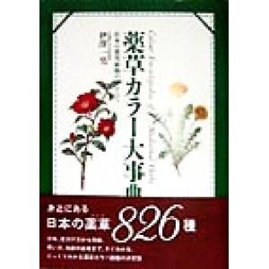 薬草カラー大事典 日本の薬用植物のすべて/伊沢一男(著者)