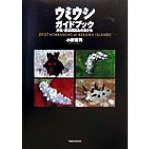 ウミウシガイドブック 沖縄・慶良間諸島の海から/小野篤司(著者)|bookoffonline