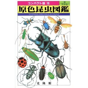 原色昆虫図鑑(2) 甲虫他 コンパクト版シリーズ16/昆虫(その他)|bookoffonline