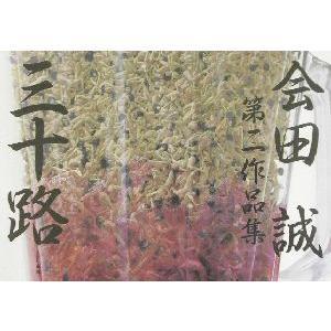 三十路 会田誠第二作品集/会田誠【著】