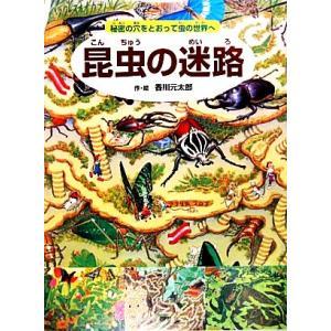 昆虫の迷路 秘密の穴をとおって虫の世界へ/香川元太郎【作・絵】,小野展嗣【監修】