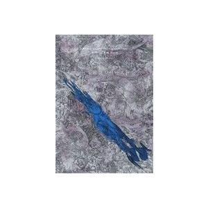 五大湖フルバースト 大相撲SF超伝奇(下) シリウスKC/西野マルタ(著者)|bookoffonline