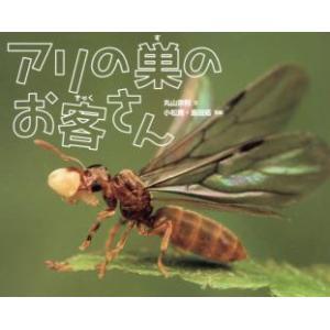 アリの巣のお客さん / 丸山宗利/文 小松貴/写真 島田拓/写真