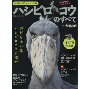ハシビロコウのすべて 動かなくてカッコいい鳥 謎の生態を徹底解説|books-ogaki