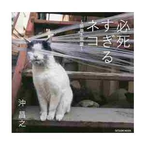 必死すぎるネコ 前後不覚篇 / 沖 昌之 著