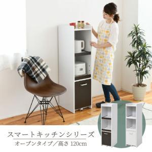 隙間ミニキッチン 高さ120タイプ キッチン 台所 キッチン収納 台所収納 引出し 調理器具 調理器具収納 引出し収納 コンセント付 bookshelf