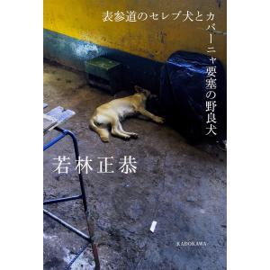 著:若林正恭 出版社:KADOKAWA 発行年月:2017年07月