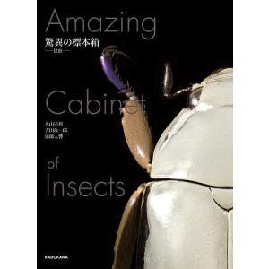 驚異の標本箱−昆虫−/丸山宗利/吉田攻一郎/法師人響