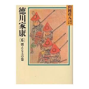 日曜はクーポン有/ 徳川家康 6/山岡荘八