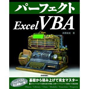 パーフェクトExcel VBA/高橋宣成