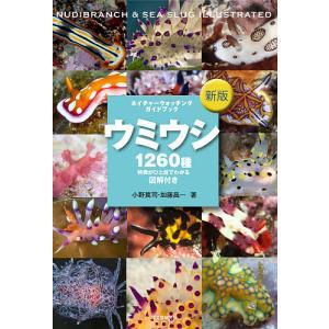 ウミウシ 特徴がひと目でわかる図解付き 1260種/小野篤司/加藤昌一