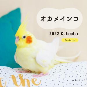 毎日クーポン有/ カレンダー '22 オカメインコ/蜂巣/香の画像