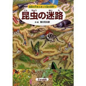 昆虫の迷路 秘密の穴をとおって虫の世界へ/香川元太郎/小野展嗣