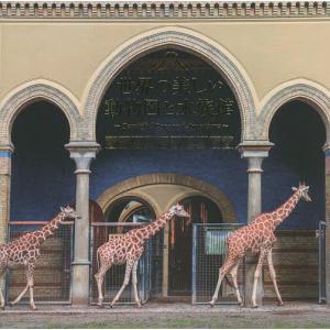 毎日クーポン有/ 世界の美しい動物園と水族館/パイインターナショナル|bookfan PayPayモール店