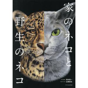 毎日クーポン有/ 家のネコと野生のネコ/澤井聖一|bookfan PayPayモール店