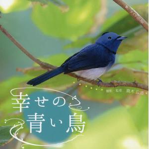 幸せの青い鳥/真木広造