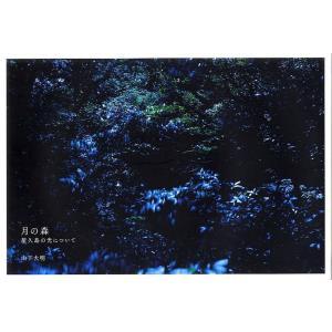 月の森 屋久島の光について/山下大明