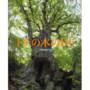 トチの木の1年/太田威/子供/絵本