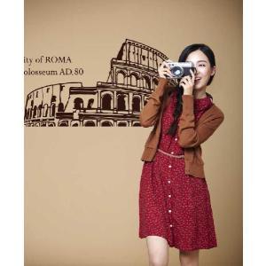 ウォールステッカー 転写式タイプ ローマの都市|bora|04