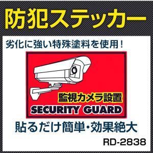 防犯シール 防犯ステッカー (監視カメラ設置)【RD-2838】 |bouhansengen