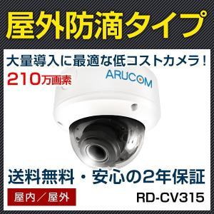 HD-TVI ドーム 防犯カメラ 監視カメラ 210万画素 赤外線機能搭載屋外防滴型ドームカメラ RD-CV315|bouhansengen