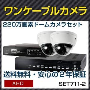 ワンケーブルカメラ 屋外 ドーム 2台 セット 録画 暗視 220万画素 屋外防滴 ワンケーブル 監視カメラ 遠隔監視 レコーダーセット (SET661-2)|bouhansengen