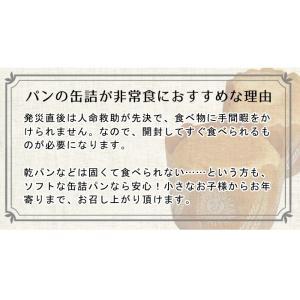 非常食 保存食 災害備蓄用パン缶詰5年保存(保...の詳細画像2