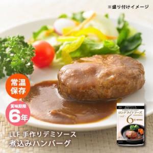 おいしい非常食 LLF食品 手作りデミソース煮込みハンバーグ100g(防災グッズ 6年保存 ロングライフフーズ 肉 美味しい)
