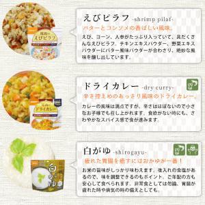 非常食 防災食 アルファ米12種セット(12食分)  尾西食品 コンプリートBOX  送料無料|bousai|11