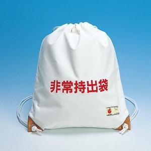 非常持出袋B(防災グッズ 非常用持ち出し用品)|bousaikeikaku