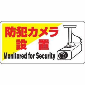 防犯用標識 防犯カメラ設置 ユニット 802-60|bousaikeikaku