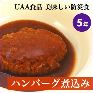 非常食 美味しい防災食 ハンバーグ煮込み(防災 5年保存 保存食 おかず)|bousaikeikaku