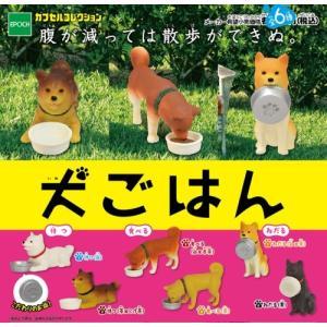 犬ごはん(6種) コンプリートセット|bowwando
