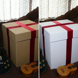 特大ボックス(クラフト/白)50センチ角 赤リボン付き|boxstore-net