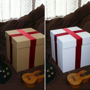 特大ボックス(クラフト/白)40センチ角 赤リボン付き|boxstore-net
