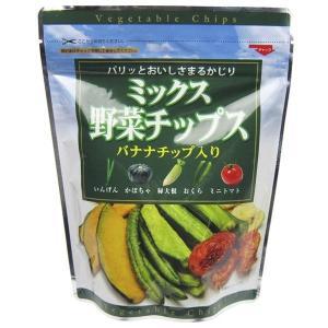 代引不可 フジサワ ミックス野菜チップス(100g) ×10個 ベジタブル フライ バナナ ドライ だいこん トマト かぼちゃ いんげん おくら 1袋あたり:160×70×205m|bozu