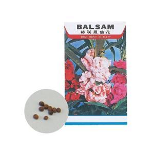 花の種(苗床付) ホウセンカ 2743 4521718027432|bp-s