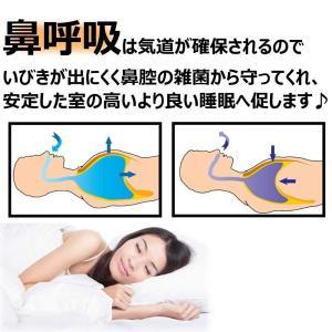 CoziBreath (3個入) いびき軽減/防止用 鼻呼吸補助 鼻腔拡張グッズ 男女兼用 ノーズピン 安眠へ促します (Lサイズ)|braggart4