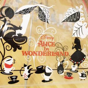 キャラクター 傘 ふしぎの国のアリス アリス 大人 ビニール傘 60cm 32408|braggart4