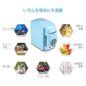 Poweradd ミニ冷温庫 家庭 車載両用 2電源式 冷温両用 保冷 保温 冷蔵温度:環境温度以下...