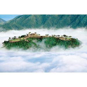 1000ピース ジグソーパズル めざせパズルの達人 天空の城 竹田城跡-兵庫(50x75cm)