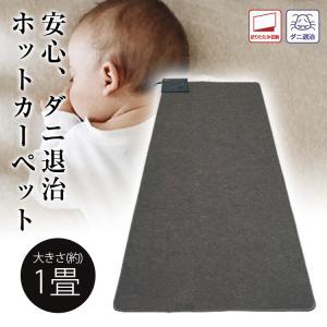 足元から暖める床生活のスタンダード(1畳用) 折り畳み収納 ダニ退治  サイズ:約90×180cm ...