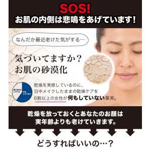 コスビューティー 水素水ミスト 水素水ナノミスト美顔器|branding-japan