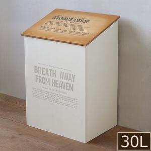 ごみ箱/おしゃれ/ゴミ箱/木製 蓋つきダストボックス 30L用 /BREA
