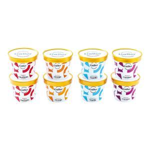 ガレープレミアムアイスクリーム8個セット GLN-8 お歳暮 お返し 冬ギフト 送料無料 breezebox
