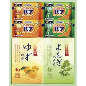 炭酸 薬用入浴剤セット BKK-10  内祝い ギフト 出産 結婚 快気 法事|breezebox
